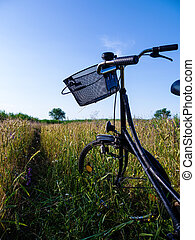 bicycle in landscape