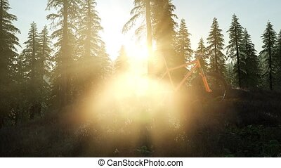 bicycle in mountain forest at sunset