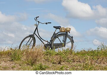 Bicycle in the country