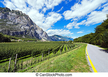 Bicycle Lane in Sarca Valley - Trentino Italy - Bicycle path...