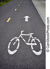 Reserved bicycle lane painted on asphalt