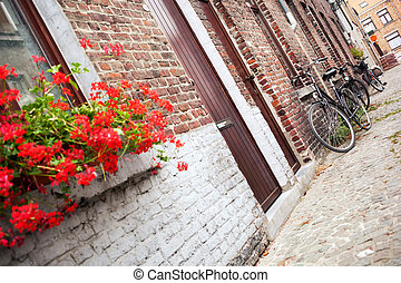 bicycle on the narrow street