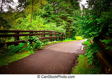 A paved bicyle path through lush green forest. A fence borders.