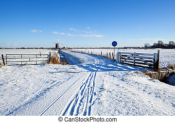 bicycle road by Dutch windmill