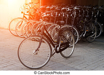 Bicycle rows parking at sunrise