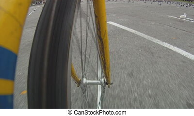 Camera mounted on bicycle frame shows front wheel. Riding on parking lot through pigeons.