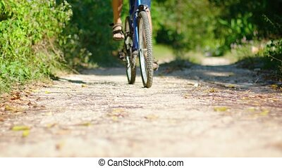 Cyclist riding a mountain bike on a nature trail demonstrates the wagon wheel effect, as the wheels appear to roll backward. Video 3840x2160