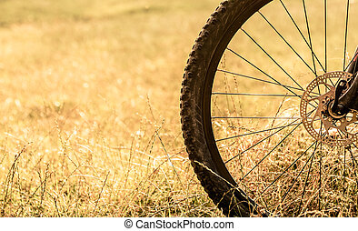 bicycle wheel in the field closeup