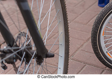 bicycle wheel on the asphalt in the park