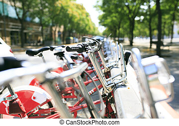 bicycles, 在一行中, 在, 巴塞羅那