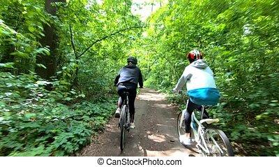 bicycles, filles, équitation, par, forêt