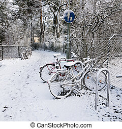 bicycles, in, winter