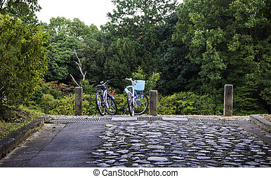 Bicycles of couple in countryside