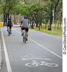 bicyclette voyageant, parc