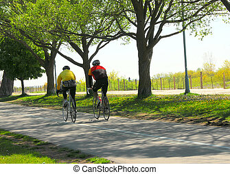 Bicycling in a park - Couple bicycling in a summer park