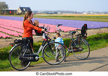 Bicycling in Tulip Fields - Family with two kids bicycling...