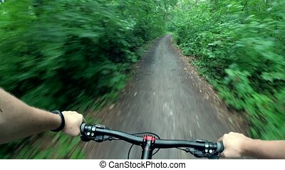bicyclist rides through the forest - bicyclist rides along...