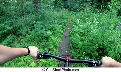 bicyclist rides through the forest - bicyclist rides by the...