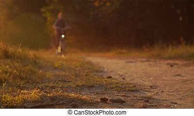 Bicyclist riding a bike in autumnal park at sunset -...