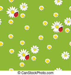biedronki, kwiaty, chamomile
