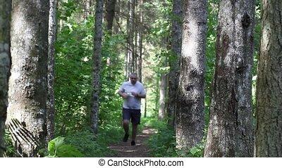 biegacz, ciągnąć, las