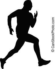biegacz, czarny samczyk, sylwetka