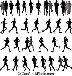 biegacze, sylwetka, zbiór