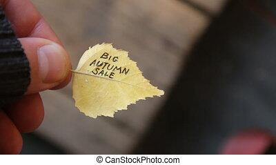 Big Autumn sale idea, text on colorful leaf.