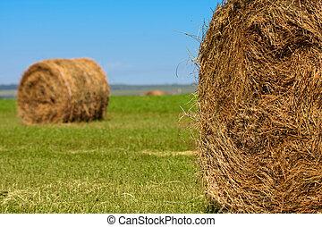Big bales of straw