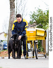 Big black dog welcoming postman at garden gate