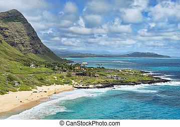 Big Blue Hawaii.