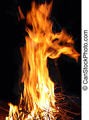 big bonfire flame burning in dusk camping