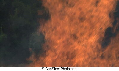 Big Bonfire - Big bonfire in field