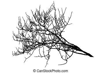 Big branch tree silhouette in winter. Vector illustration
