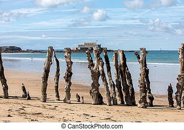 Big breakwater, 3000 trunks to defend the city from the tides in Saint-Malo, Ille-et-Vilaine, Brittany, France