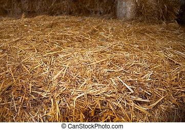 Big brick of yellow dry hay, close up