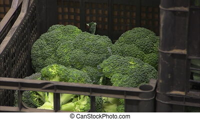 Big broccoli inside a basket - A steady medium shot of...