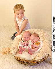 Big brother and twin babies