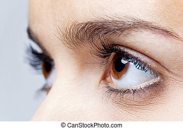 Big brown eyes - Close up of a females brown eyes