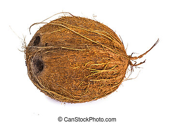 Big brown ripe coconut