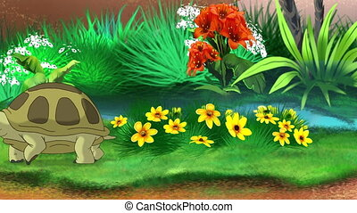 Big brown turtle walks near the pond on a sunny summer day. Handmade 2D animation.