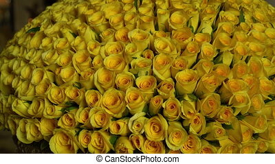 Big bunch of yellow roses - A tilting, extreme close up shot...