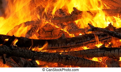 Big Campfire from Branches Burn at Night in the Forest. ...