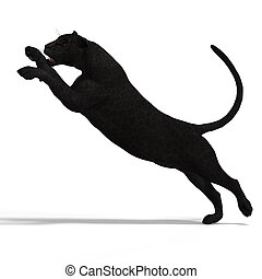 Dangerous Big Cat Black Leopard With Clipping Path Over White