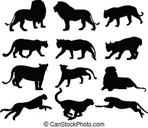big cats silhouettes - vector