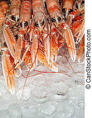 Big claw langoustines on ice