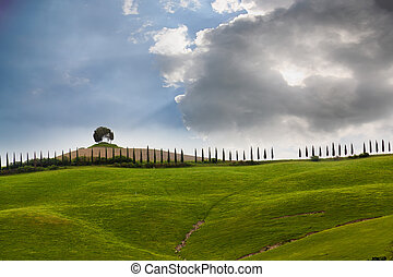 Big cloud over the cypress avenue, Tuscany, Italy