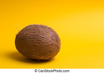 coconut on a yellow background