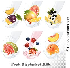 Big collection icons of fruit in a milk splash. Guava, plum, mango, blackcurrant, strawberry, cherry, blueberry, peach. Vector Set