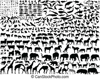 Big collection of different animals silhouette - vector